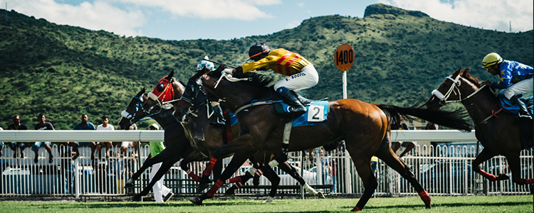 How to profit on horse racing arbitrages - Smart Betting